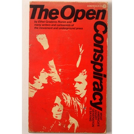 The Open Conspiracy. What America s Angry Generation Is Saying.