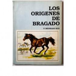 Los orígenes de Bragado.